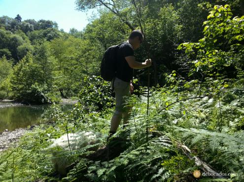 Acceso a las pozas de la zona de Pagoaga. Río Urumea