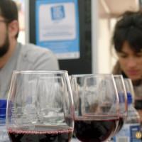 Presentacion de Euskadi Gastronomica en Ardoaraba 2014