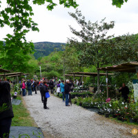 Casetas de la Feria de Plantas de Colección en Iturraran