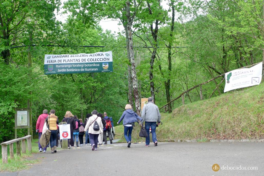 Entrada a la Feria de Plantas de Colección en Iturraran