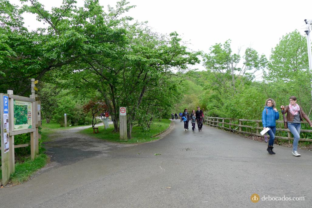 Senderos del Parque de Pagoeta en la Feria de Plantas de Colección en Iturraran
