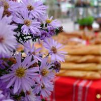 Mercado de la Marina en Hondarribia, comarca de Bidaosa