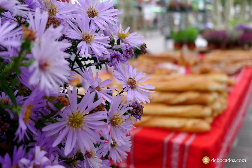 El lado más gastronómico de Oarsoaldea y Bidasoa