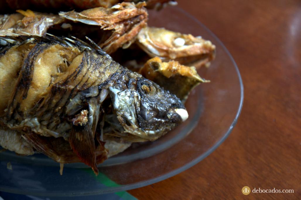 Pescado fresco, gastronomía La Palma