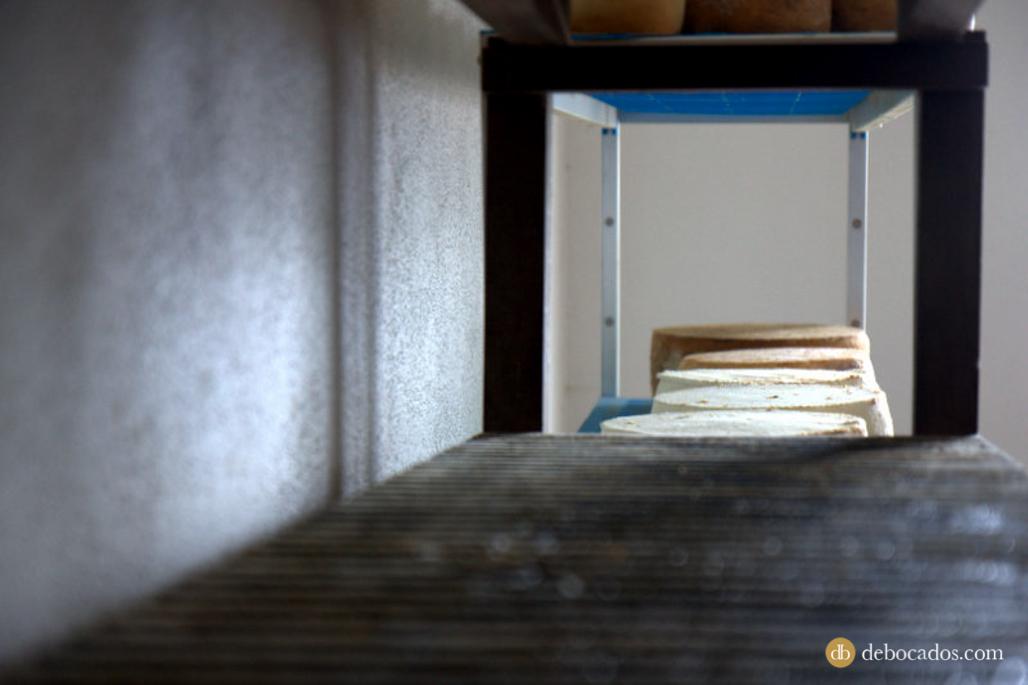 Queso de cabra de la quesería Luna de Awara, gastronomía de la isla de La Palma